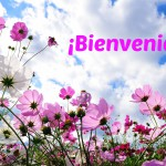 Bienvenida a tu blog